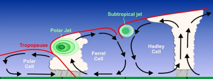 Idealized cross section of the atmospheric cells.