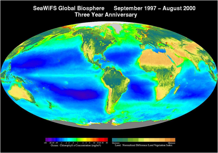 global biosphere chlorophyll distribution